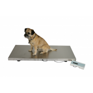 V-250 Large Veterinary Scale